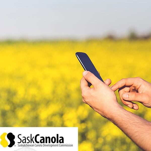 Sask-canola-online-voting-case-study
